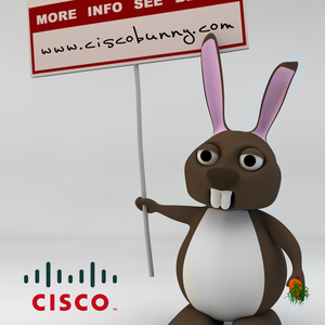 Sad Time these Days, if your not working with CISCO