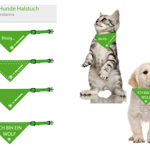 katzen und hunde spiele