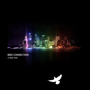 Bird connection