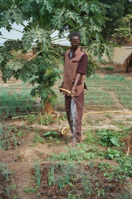 Sub150 in mali watering garden bigger