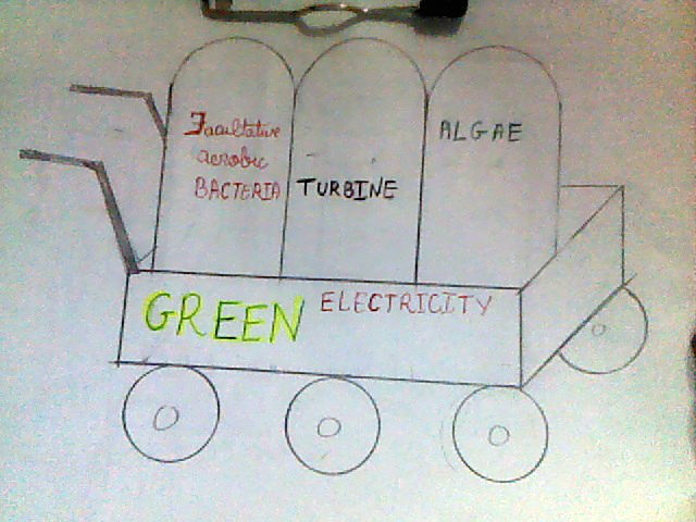 Green electricity energy r evolution a watershed for Design of oxidation pond